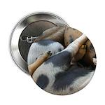 "Lotsa Spots 2.25"" Button (10 pack)"