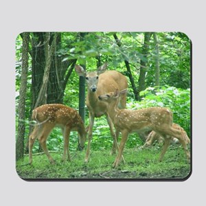 Doe and Two Fawns Mousepad