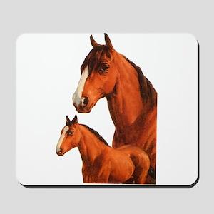 Two horses Mousepad