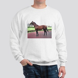 REAL QUIET_8x10_conformation Sweatshirt