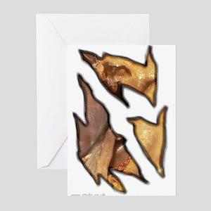 Stationery - Abdomen Greeting Cards (Pk of 10)