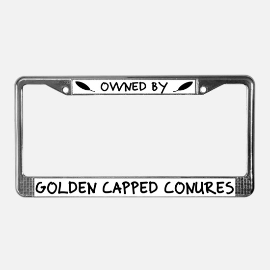 Owned by Golden Capped Conures License Plate Frame