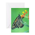 Monarch Butterfly Greeting Card - Blank Inside