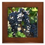 Wine Grapes Framed Tile