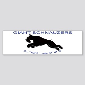 bumper sized Sticker great for anywhere
