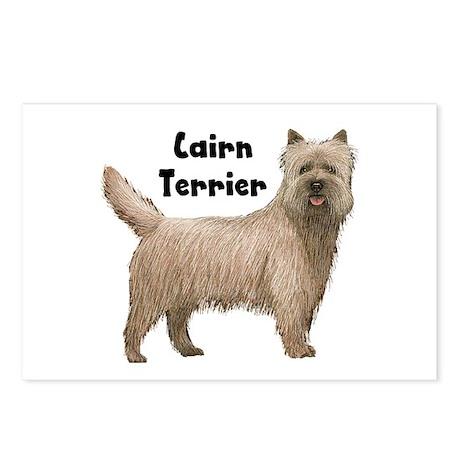 Cairn Terrier Postcards (Package of 8)