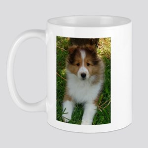 TLC OASIS SHELTIES Mug