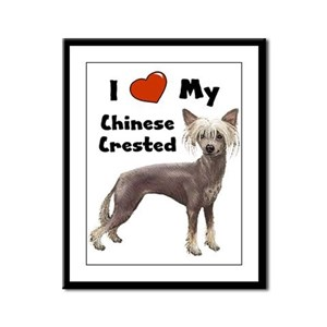 I Love My Chinese Crested Framed Panel Print