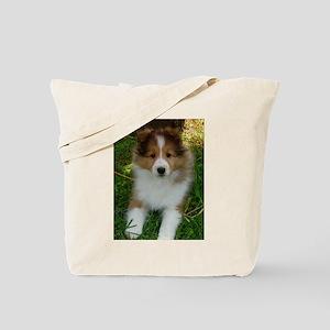 TLC OASIS SHELTIES Tote Bag