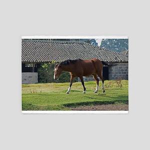 Ecuador horse 5'x7'Area Rug