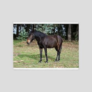 Dark bay horse 5'x7'Area Rug