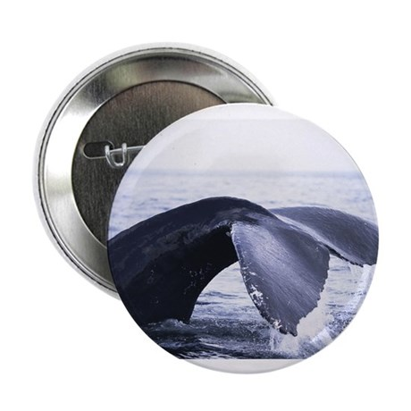 """Whales Tail 2.25"""" Button (10 pack)"""