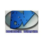 Dewey Virgin Rectangle Magnet (10 pack)