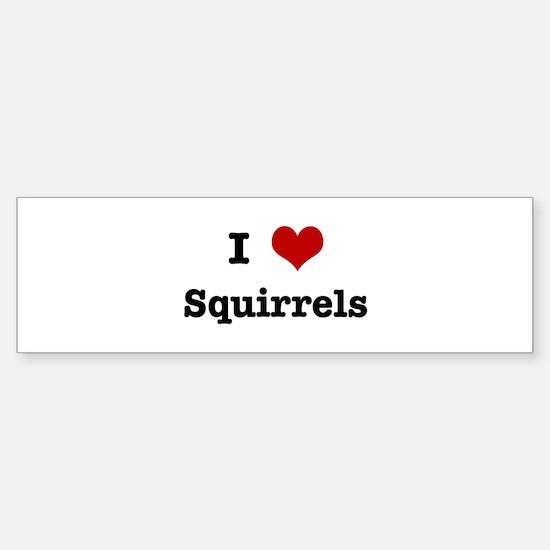I love Squirrels Bumper Bumper Bumper Sticker