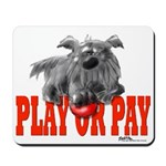 Play or Pay Cairn Mousepad