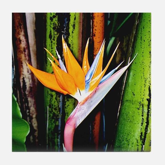 Bird of Paradise - Tile Coaster