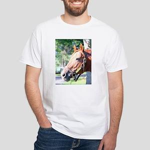 SECRETARIAT - 1973 Triple Crown winner T-Shirt