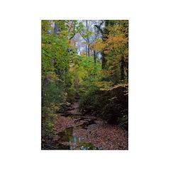 Michael Traubel Rectangle Magnet (100 pack)