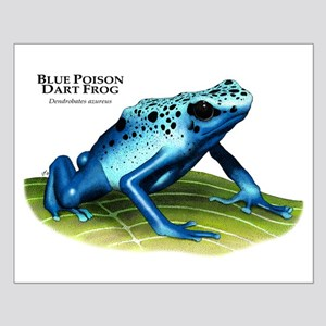 Blue Poison Dart Frog Small Poster
