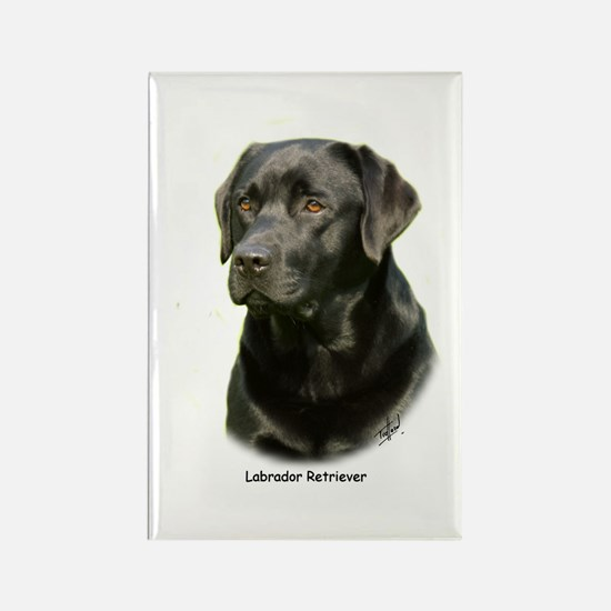 Labrador Retriever 9A054D-23a Rectangle Magnet