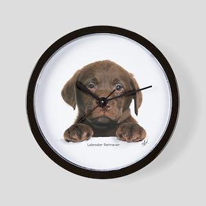 Chocolate Labrador Retriever puppy 9Y270D-050 Wall