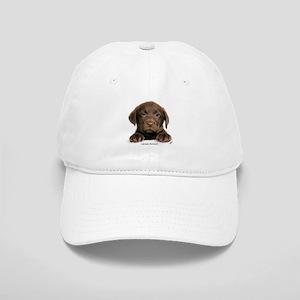 Chocolate Labrador Retriever puppy 9Y270D-050 Cap