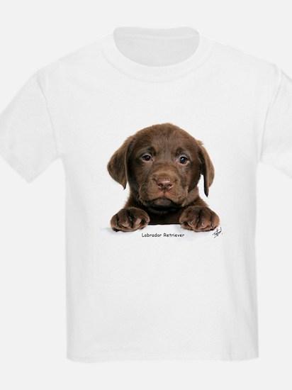 Chocolate Labrador Retriever puppy 9Y270D-050 T-Shirt