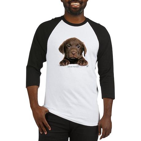 Chocolate Labrador Retriever puppy 9Y270D-050 Base