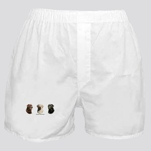 Labrador Retrievers Boxer Shorts