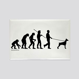 Dobie Evolution Rectangle Magnet (10 pack)
