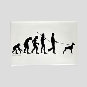 Dobie Evolution Rectangle Magnet (10 pack)