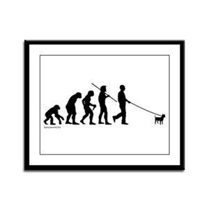 Chihuahua Evolution Framed Panel Print