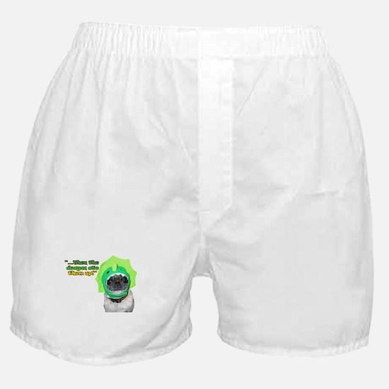 Dragon Dog Boxer Shorts