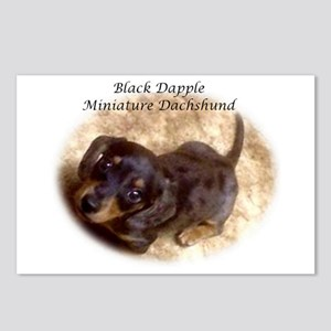 Black Dapple Mini Dachsie  Postcards (Package of 8