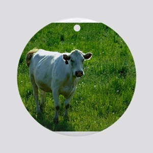 Charolais cow in field Ornament (Round)
