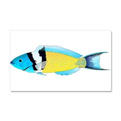 Bluehead Wrasse Car Magnet 20 x 12