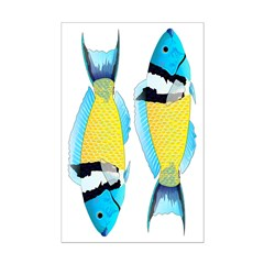 Bluehead Wrasse Posters