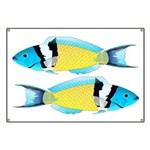 Bluehead Wrasse Banner