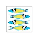 Bluehead Wrasse Sticker