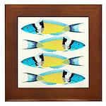 Bluehead Wrasse Framed Tile