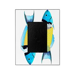 Bluehead Wrasse Picture Frame