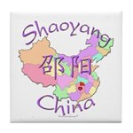 Shaoyang China Tile Coaster