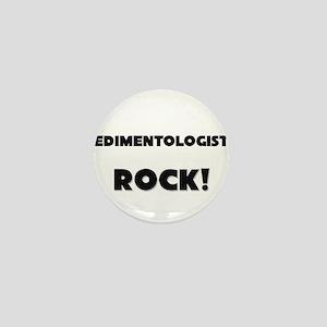 Sedimentologists ROCK Mini Button