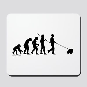 Pom Evolution Mousepad
