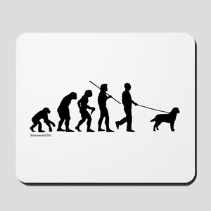 Lab Evolution Mousepad