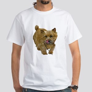 Norwich Terrier White T-Shirt