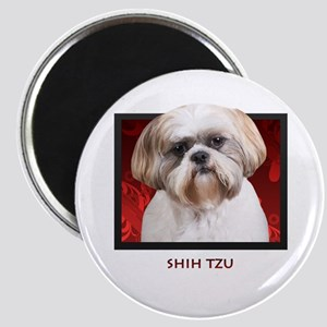 Shih Tzu Magnet