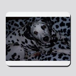Spotted Dog Mousepad