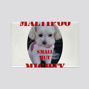 maltipoo_small_but_mighty copy Magnets