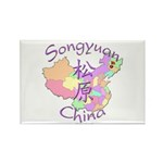 Songyuan China Rectangle Magnet (10 pack)